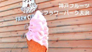 神戸フルーツフラワーパーク ランチ 混雑 デート