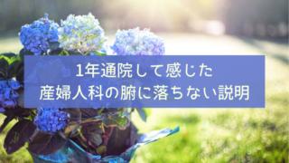 妊活日記 20代 専業主婦 不妊