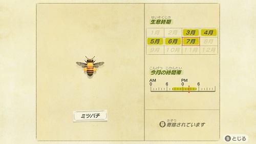 あつまれどうぶつの森 虫 7月 ミツバチ