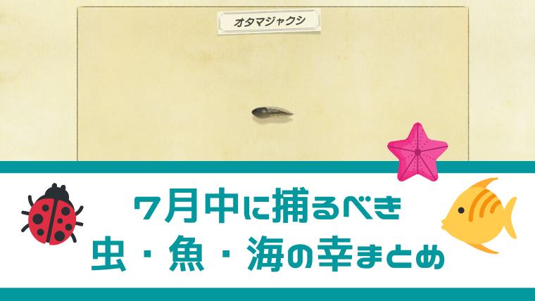 あつ森 北半球 7月 虫 魚 海の幸